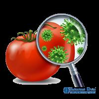 На какие виды деятельности нужно получать санитарно-эпидемиологическое заключение (СЭЗ)?